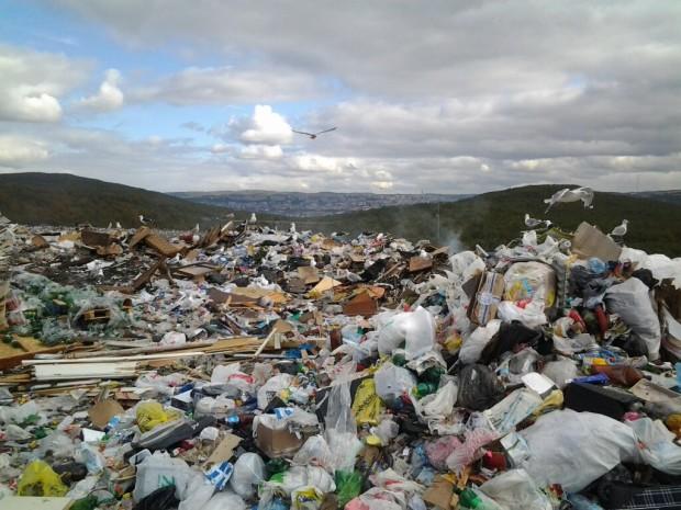 Под Мурманском заложат мусорный полигон