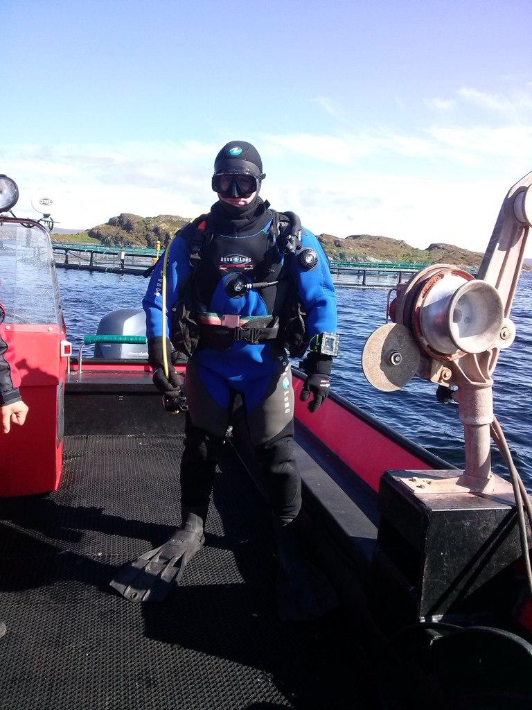 «Русская аквакультура» зафиксировала убыток из-за гибели рыбы