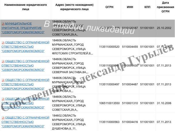 Североморскжилкомхоз Александр Гурылев